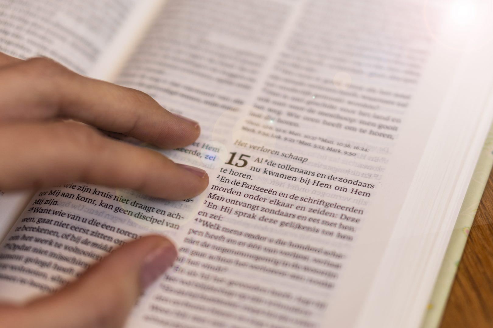 Bijbel – Het verloren schaap